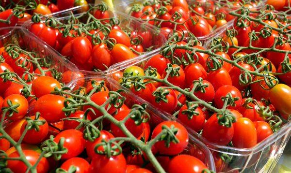 עגבניות שרי בשוק הנמל